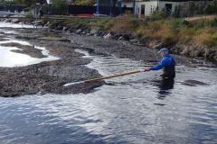 2013:  tangen hjælpes ud ved højvande.